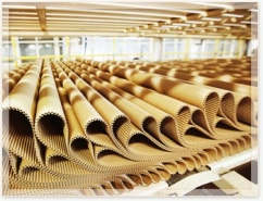 В России выросли объемы производства целлюлозы, картона и гофроящиков
